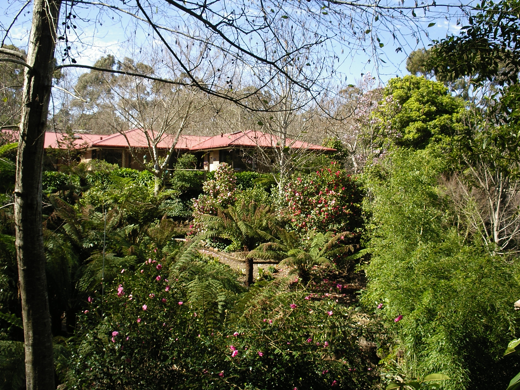 Bed And Breakfast Adelaide Hills